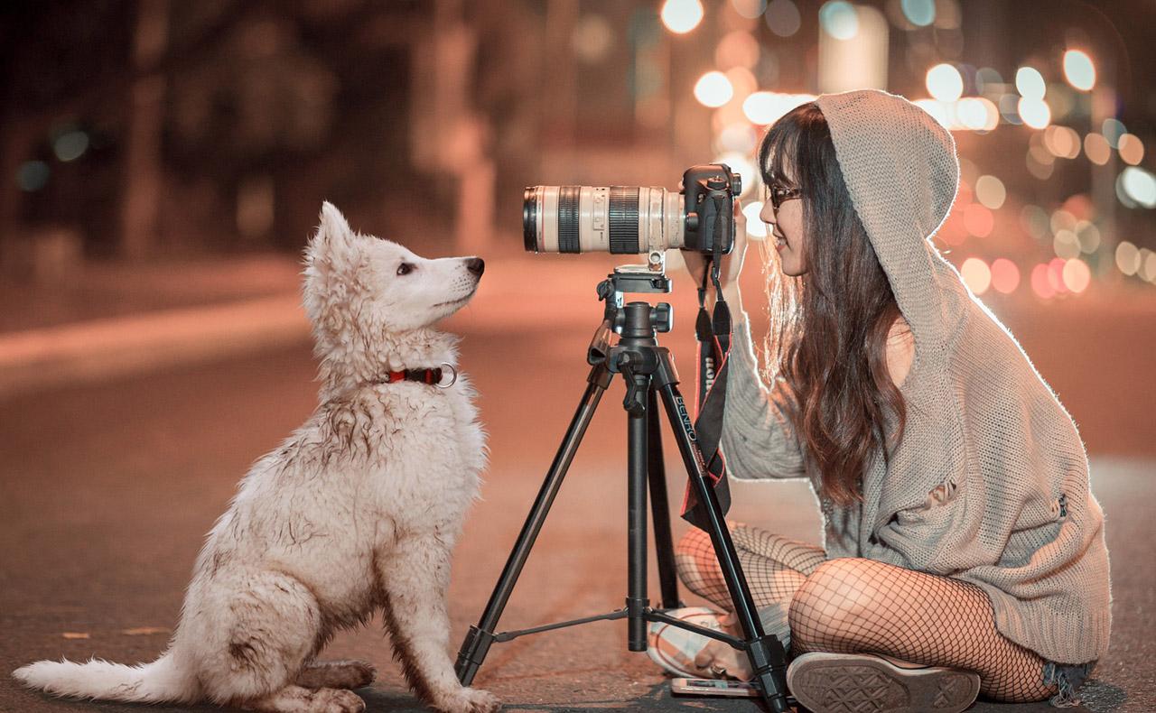 無料(フリー)で使える高画質写真素材サイト12選(商用OK)【2019年版】
